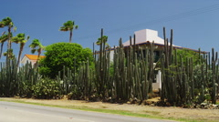 Residential House near Eagle Beach surrounded by Cactus Stock Footage