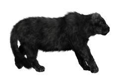 Black Panther - stock illustration