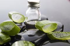 Sliced aloe leaves with oil on the stone Stock Photos