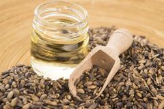 Seeds of a milk thistle (Silybum marianum, Scotch Thistle, Marian thistle ) - stock photo