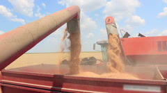 Combine harvesters unloading wheat Stock Footage