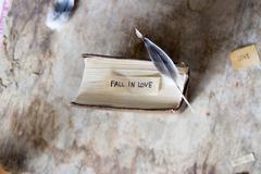 Fall in love. - stock photo