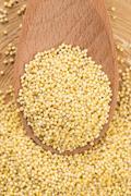 millet groats - stock photo