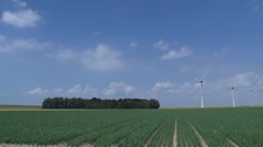 North East polder, onion field, row of trees, wind farm along sea dike Stock Footage