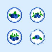Design Stickers with Juicy Ripe Blueberry. Stock Illustration