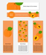 Stock Illustration of Design of Banners with Fresh Apricot.