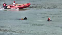 Terre Neuve Dogs Demonstration of Saving Drowning Man, France Stock Footage