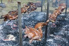 Whole pig cooked on a spit grilled Stock Photos