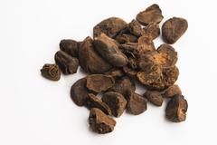 Cola nuts Stock Photos