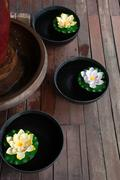 Spa still life with lotus flower and wood - stock photo