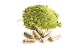 Young barley grass. Detox superfood. - stock photo