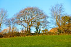 Beautiful irish autumnal landscape fields scenery in Co.Cork, Ireland. Stock Photos