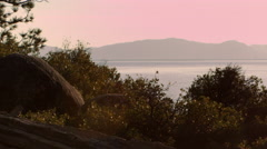 Shot of trees with mountains in distance at dusk. Shot at Emerald Bay State Stock Footage