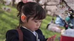 Portrait of young Japanese girl playing with cherry blossoms in a city park Stock Footage