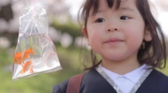 Japanese baby girl having fun checking goldfish in a city park Stock Footage