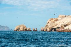 Ballestas Islands, Paracas National Reserve in Peru - stock photo