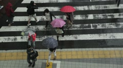 People walking under the rain at a zebra crossing, Tokyo, Japan Stock Footage