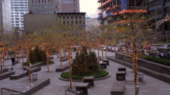 Panning shot of decorated trees with lights in New York City. Stock Footage
