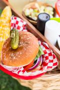 Small summer picnic with lemonade and hamburgers in the park. Stock Photos