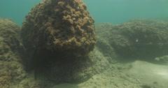 Stock Video Footage of Underwater Caesarea antiquities bricks 4K