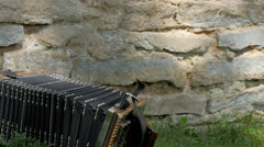 An accordion is placed on a grassy area in a park Stock Footage