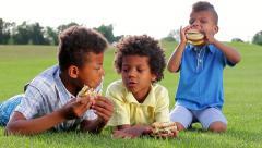 Three biracial  boys are tasting hamburgers on the sunny glade. Stock Footage