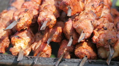 A barbecue being displayed in the park Stock Footage