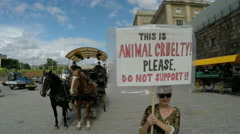 Animal Cruelty sign and protester - Stockholm tourist horses - stock footage