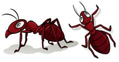 Simple red ants on white Stock Illustration