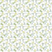 Stock Illustration of seamless pattern with orange fruit blossom.