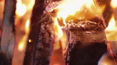 Bonfire in the forest at night close up Stock Footage