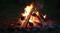 Bonfire in the forest at night Stock Footage