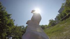 Man holding dove in his hands against sun releasing pigeon into the sky - stock footage