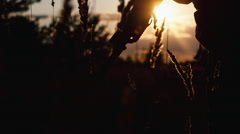 Silhouette of a sniper at sunset - stock footage