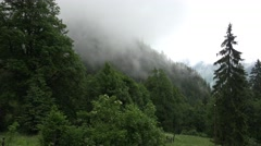 4k Upcoming clouds after rain in Alps mountain forest Stock Footage