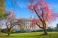 Washington in Spring Stock Photos