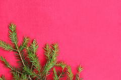 New Christmas background with real pine tree branches Stock Photos