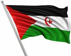 Flag of the Sahrawi Arab Democratic Republic - stock illustration