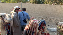 Tourst Jumps On a Camel to Ride at the Pyramids of Giza - stock footage