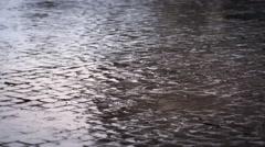 Rain-soaked cobblestones of Roman street Stock Footage