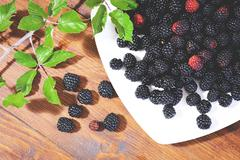 Typical berries southern Italy Stock Photos
