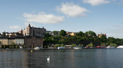 18th century housing facing Riddarfjärden in Södermalm district with a swan Stock Footage