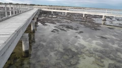 Boardwalk stromatolites Shark Bay Australia Stock Footage