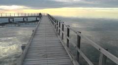 Stromatolites Shark Bay Western Australia Stock Footage