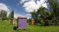 Colorful wooden beehives in summer garden and clouds. Timelapse 4K Stock Footage