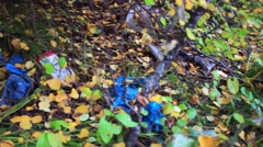 Garbage in the forest in autumn. environmental pollution Stock Footage