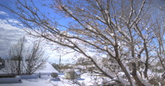 Timelapse of Snowy Urban Neighborhood Stock Footage