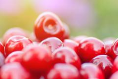 Freshly picked ripe red cherries Stock Photos