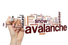 Avalanche word cloud concept - stock photo