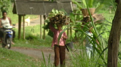 People carrying sticks on their heads in Bali. Stock Footage
